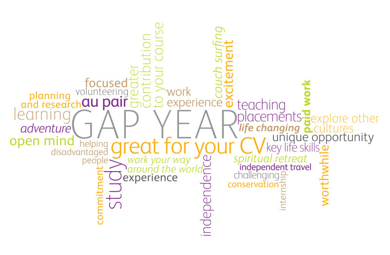 pros and cons of taking a gap year essay